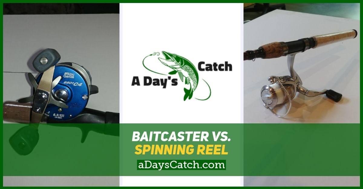 baitcaster vs spinning