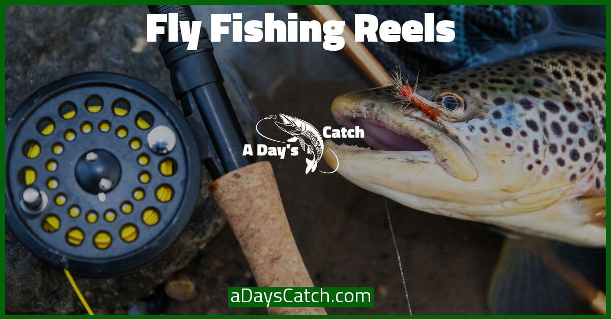 reels for fly fishing