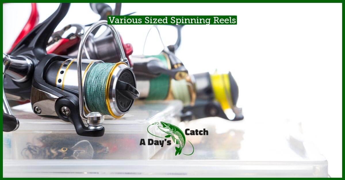 spinning reel size matters