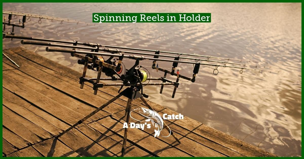 spinning reels in holder