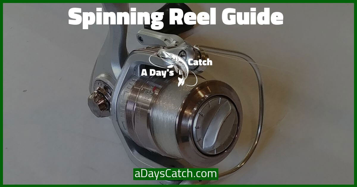 what is a spinning reel