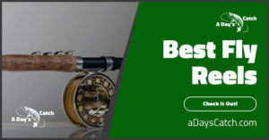 The Best Fly Reels For 2021