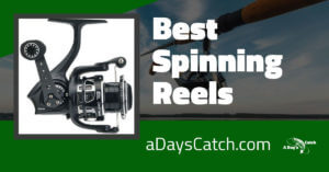 The Best Spinning Reels You Can Trust For Your Fishing in 2021