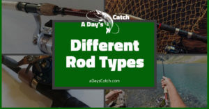 5 Awesome Types Of Fishing Rods For Freshwater Fishing