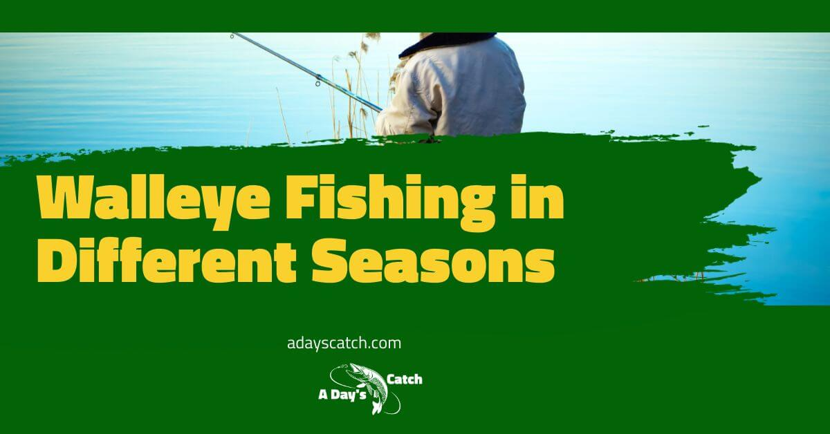 Walleye Fishing in Different Seasons
