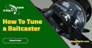 How to Tune a Baitcaster