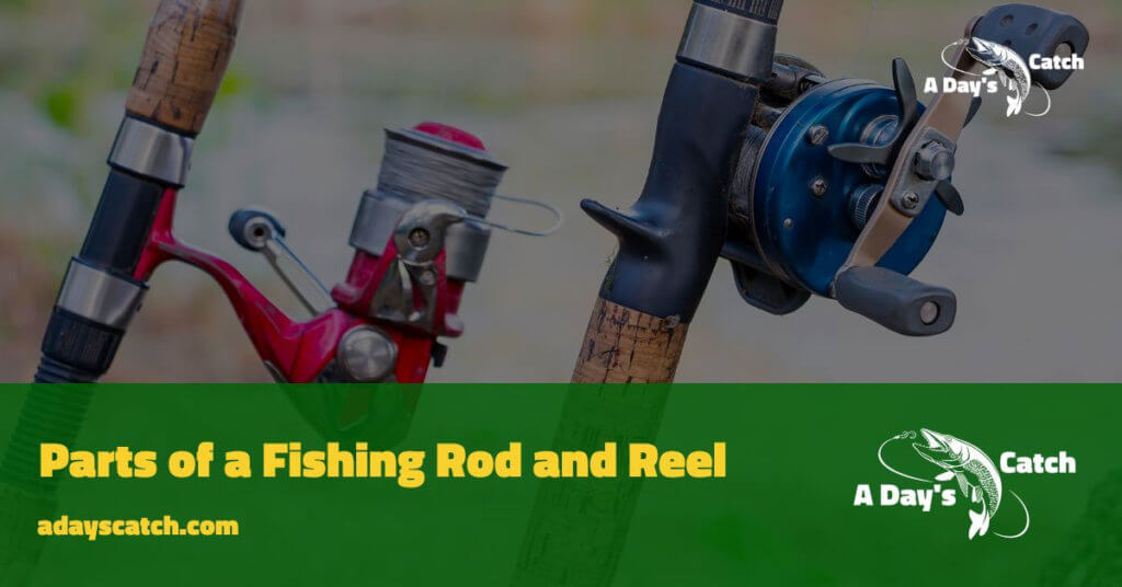 Parts of a Fishing Rod and Reel