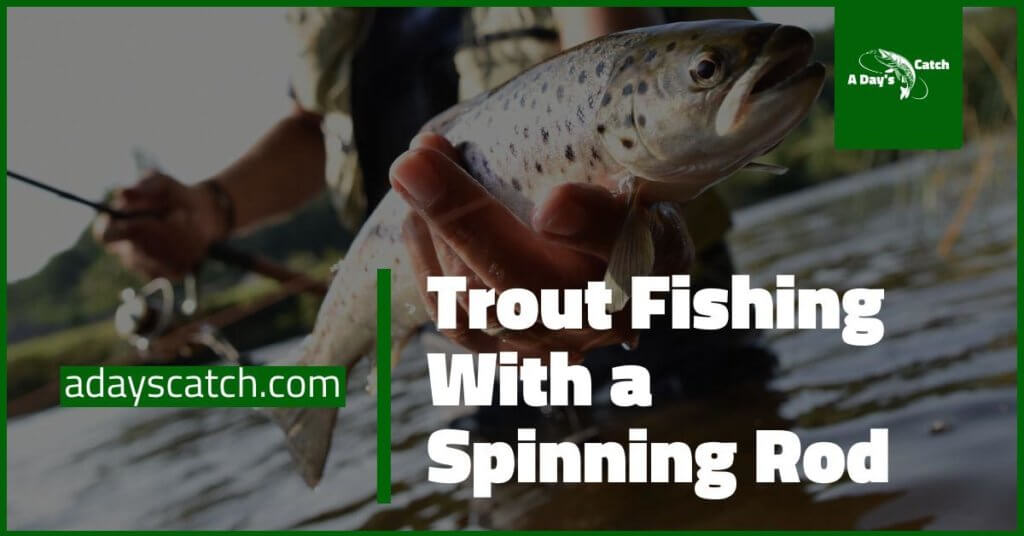 Trout fishing with spinning rod