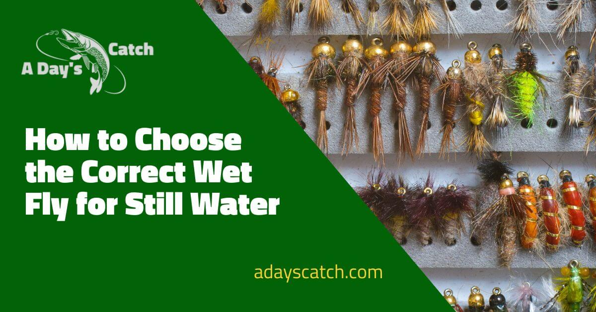 How to Choose the Correct Wet Fly for Still Water