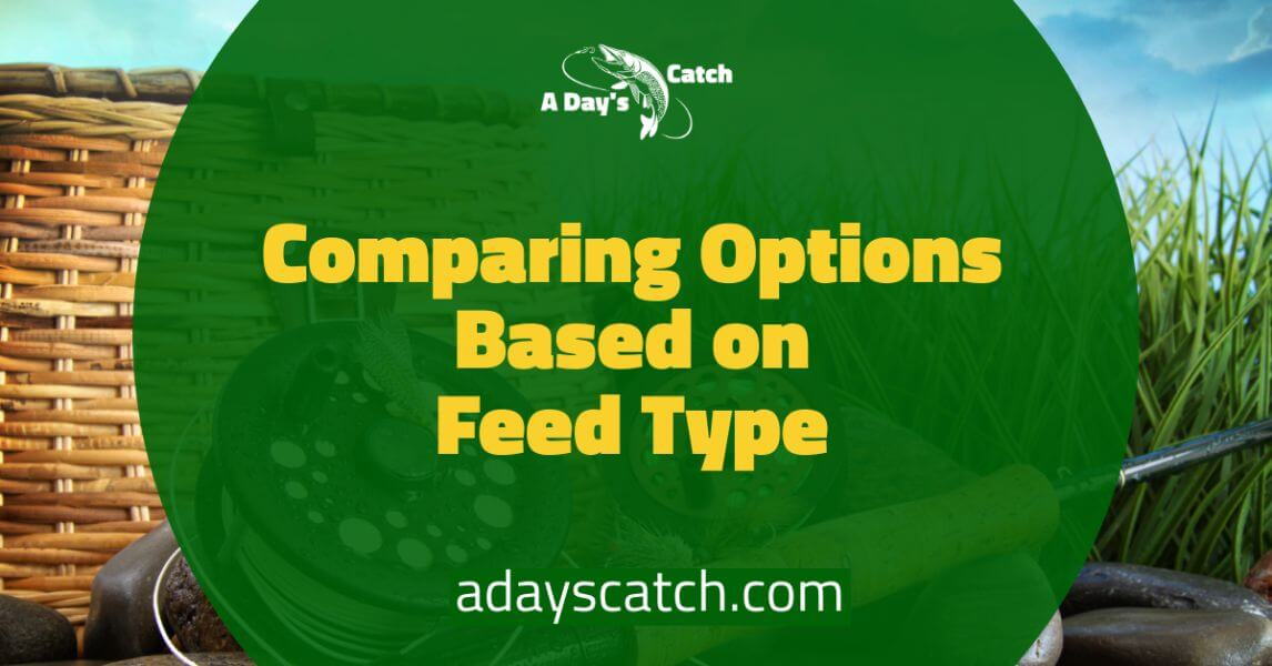 Comparing Options Based on Feed Type