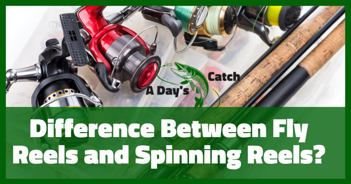 How Do Spinning Rods Differ From Fly Rods