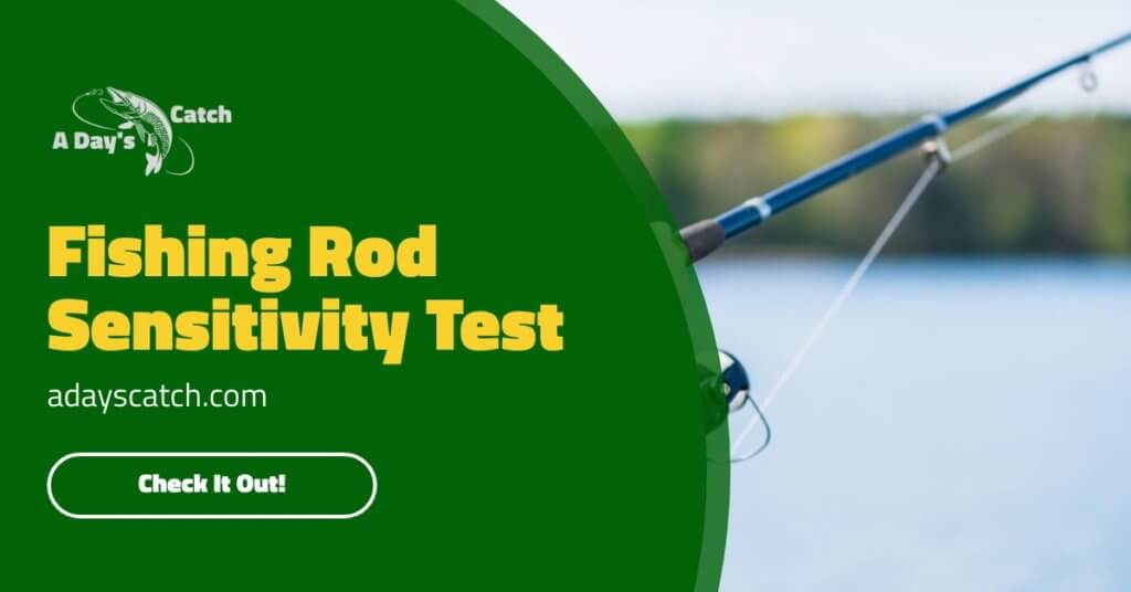 Fishing Rod Sensitivity Test