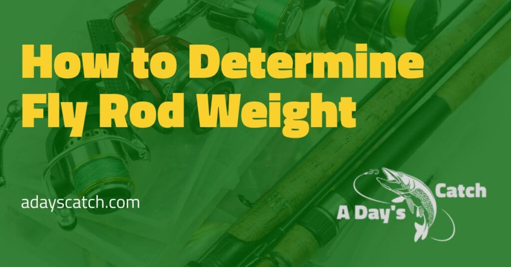 How to Determine Fly Rod Weight