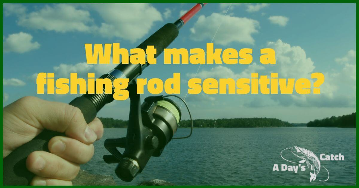 What makes a fishing rod sensitive